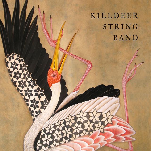 Killdeer String Band