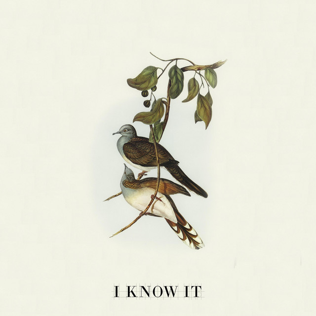 Jonny Henninger, Noël Mio - I Know It