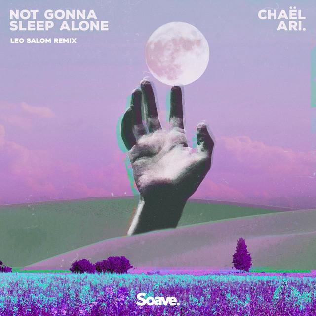 Not Gonna Sleep Alone (Leo Salom Remix) Image