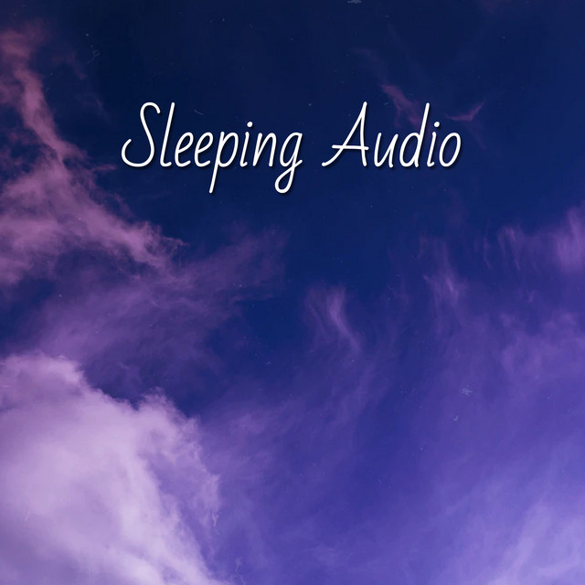 ! ! ! Sleeping Audio ! ! !