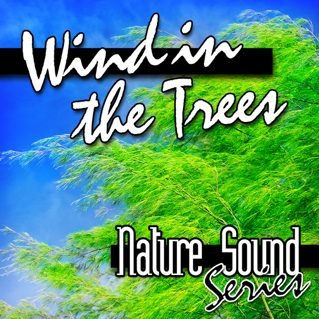 Wind in the Trees (Nature Sounds)