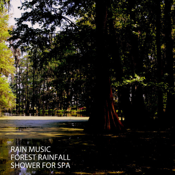 Album cover for Rain Music: Forest Rainfall Shower For Spa by Dog Music Dreams, Calming Music For Dogs, Native American Flute