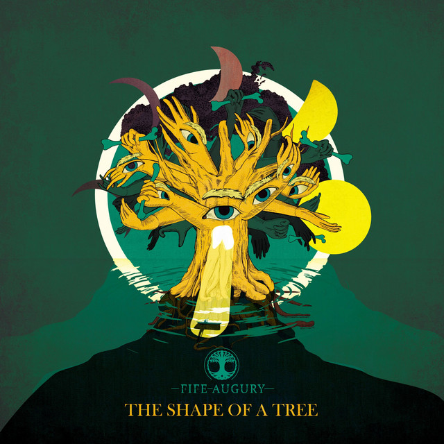 The Shape of a Tree Image