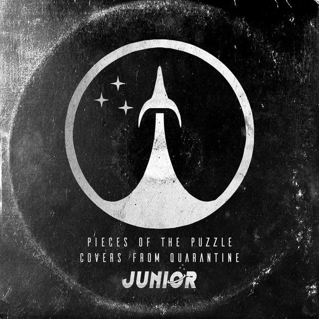 Pieces of the Puzzle (Covers from Quarantine) Image