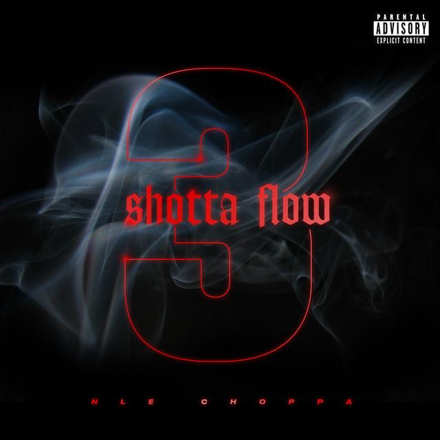 NLE Choppa Shotta Flow 3 acapella