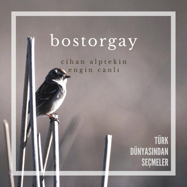 Bostorgay