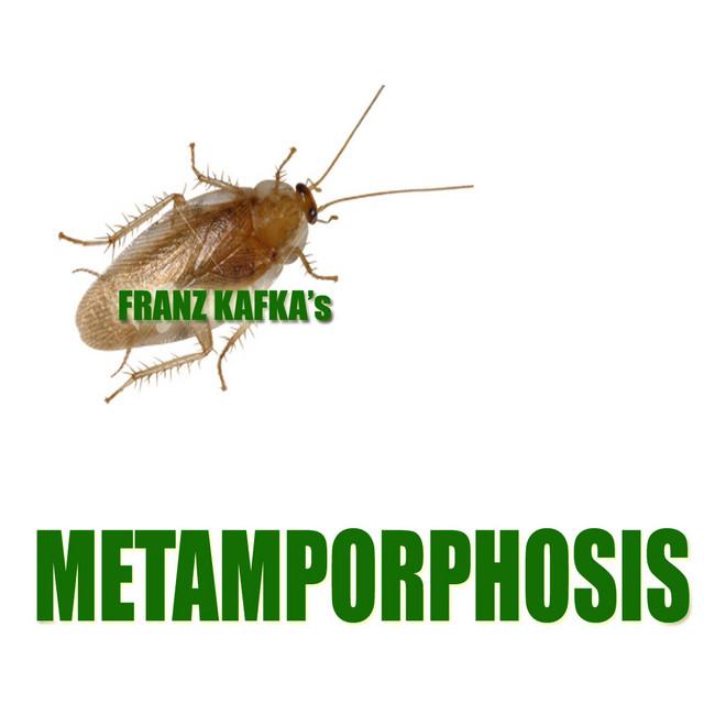 Franz Kafka – Metamorphosis