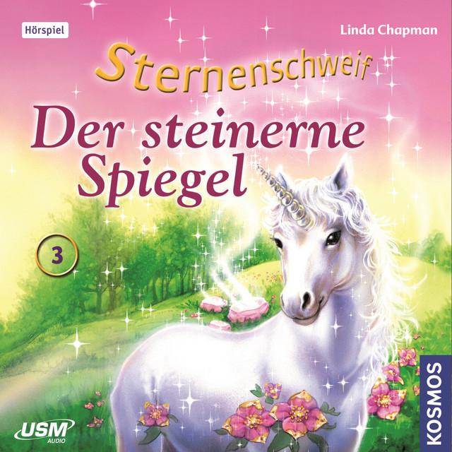 Teil 3: Der Steinerne Spiegel Cover