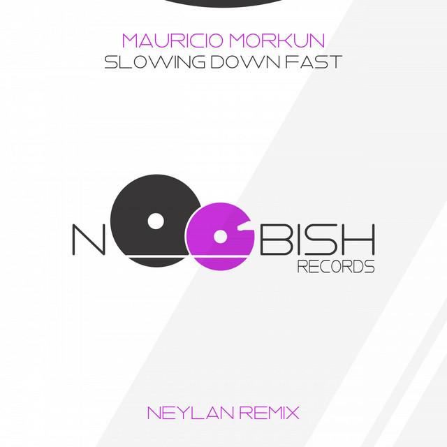 Slowing Down Fast (Neylan Remix) Image