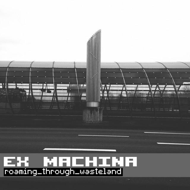 Roaming Through Wasteland