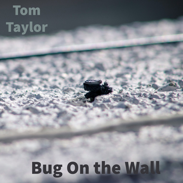 Tom Taylor played on House Party Radio
