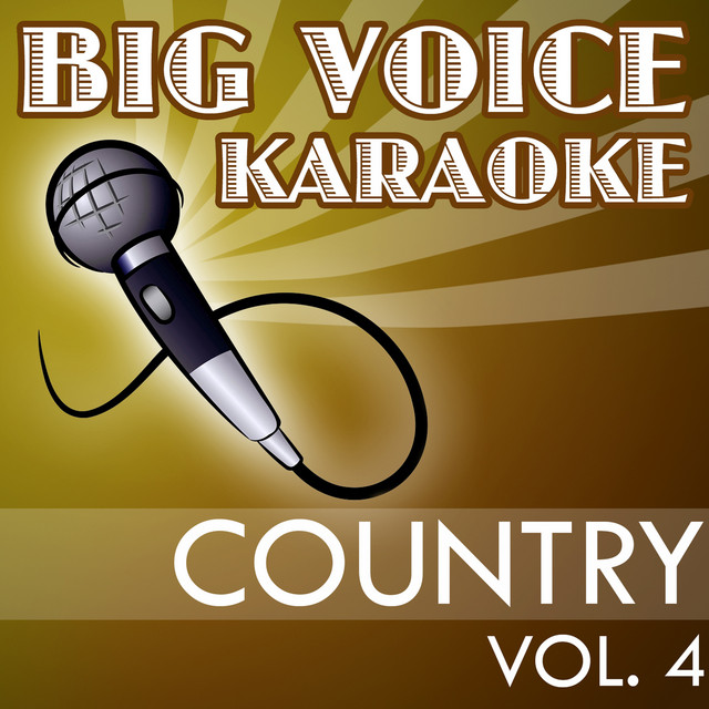 Karaoke Country Hits - Backing Tracks for Singers, Vol. 4