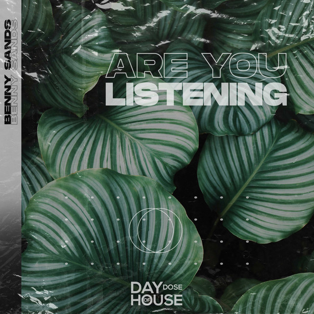 Are You Listening Image