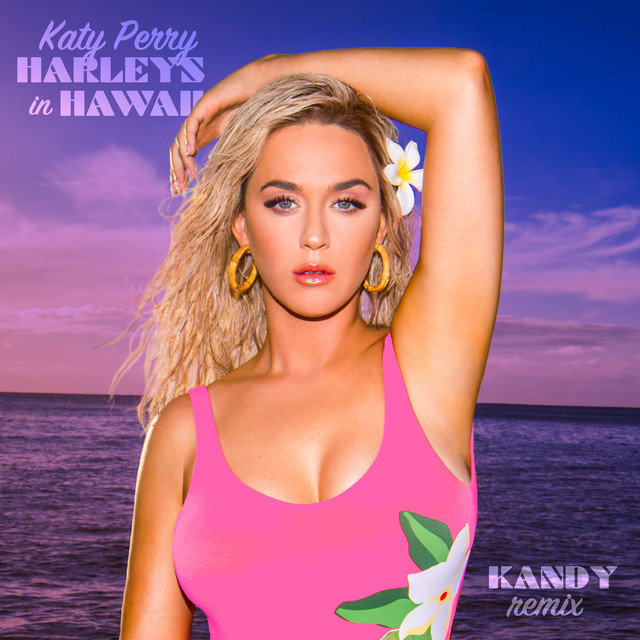Harleys In Hawaii (Kandy Remix) album cover