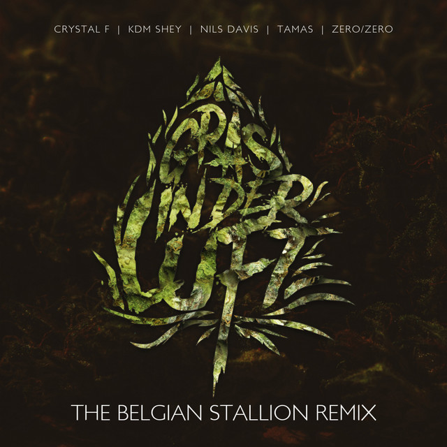 Gras in der Luft - The Belgian Stallion Remix