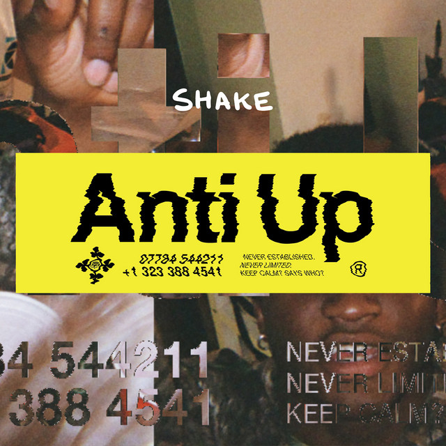 Cover art for Shake by Anti Up
