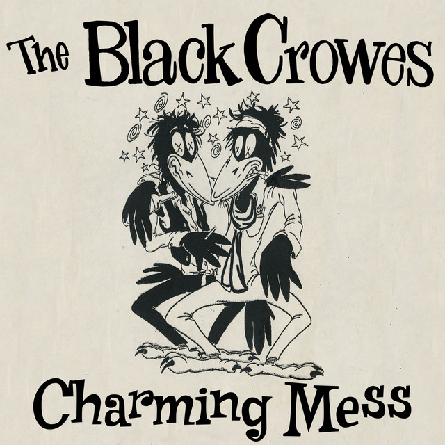 Charming Mess album cover