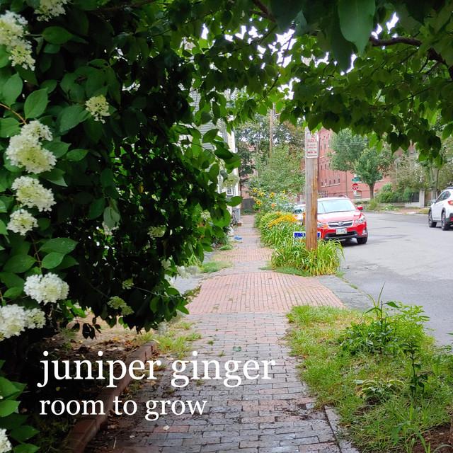 Juniper Ginger