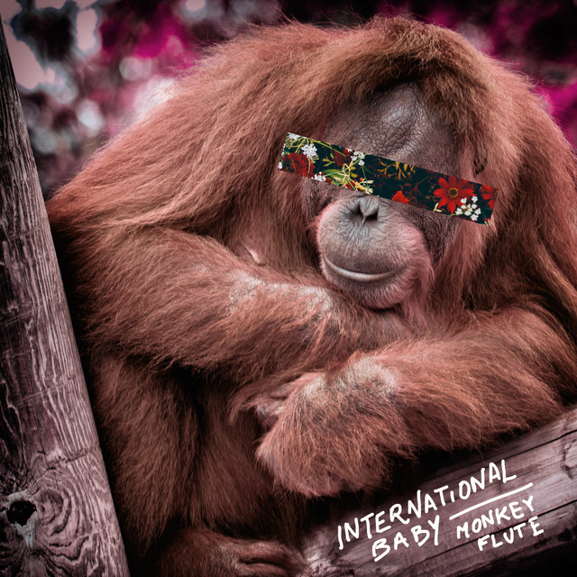 Monkey Flute (Radio Edit)