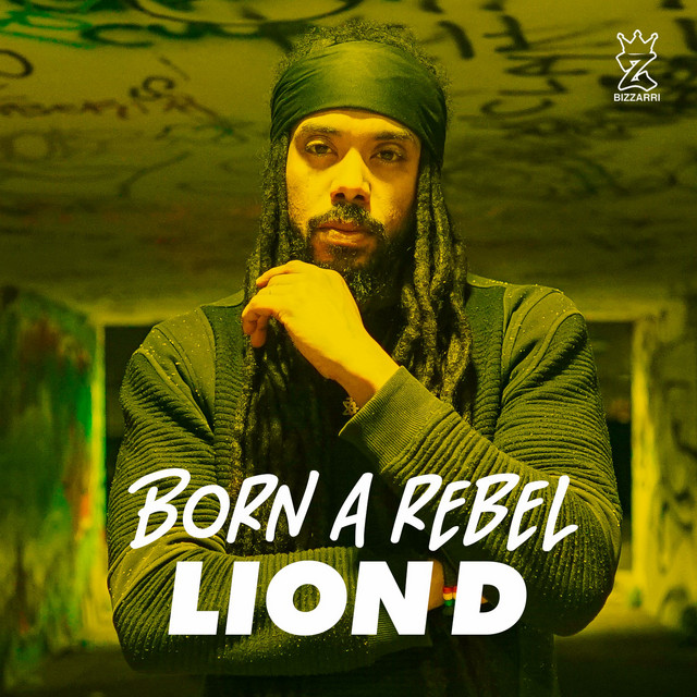 Born A Rebel Image