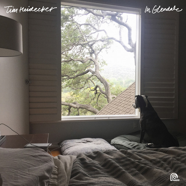Cover art for Work from Home by Tim Heidecker