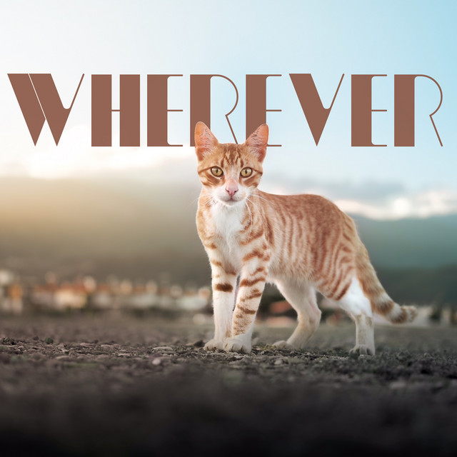 Album cover for Wherever by Cat Music, Music For Cats, Cats Music Zone