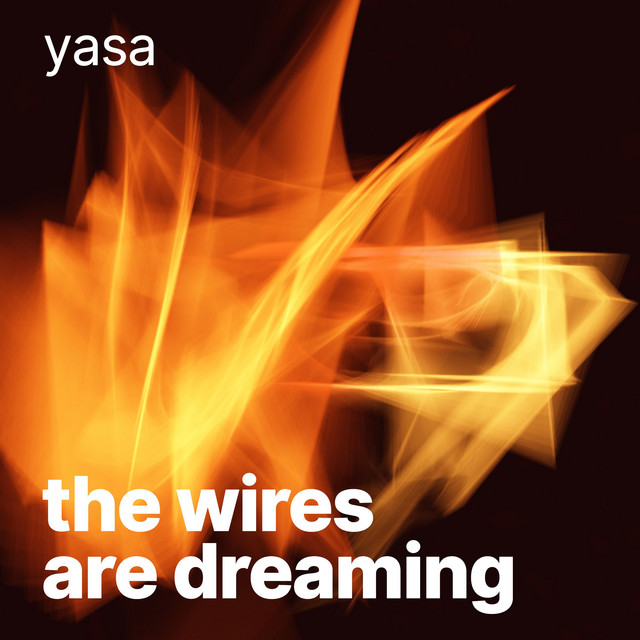 The Wires Are Dreaming