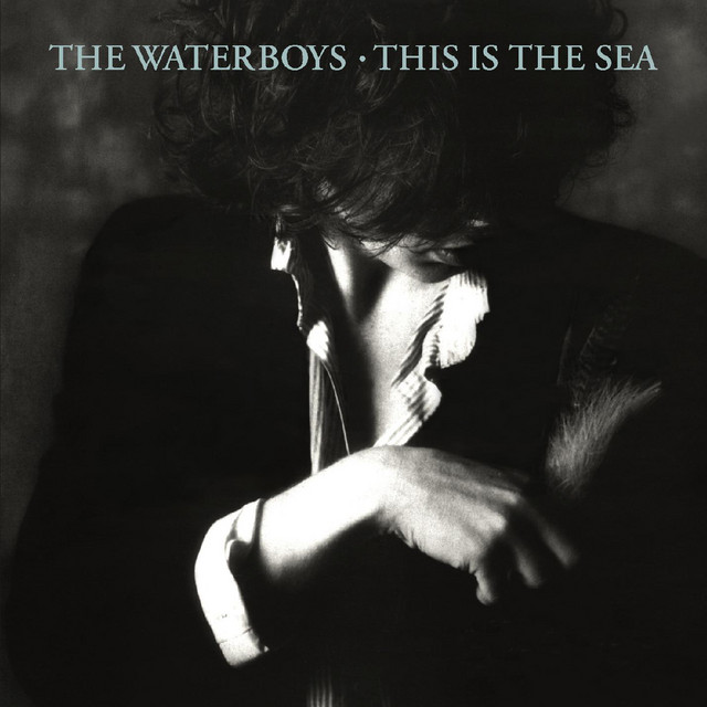 The Waterboys  This Is The Sea :Replay