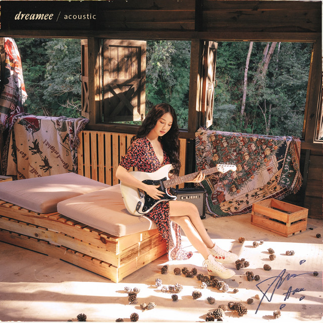 dreAMEE (acoustic)