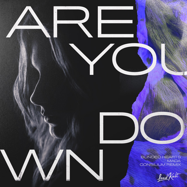 Are You Down - Consilium Remix