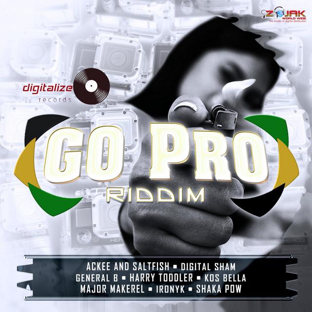 Go Pro Riddim