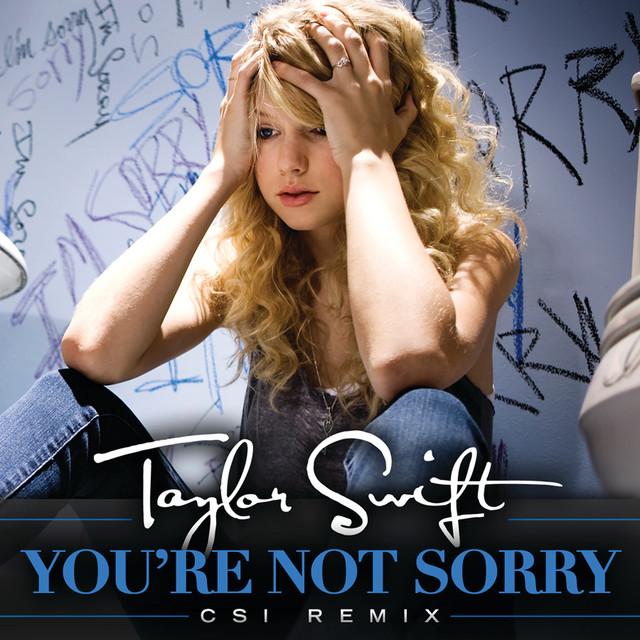 You're Not Sorry (CSI Remix)