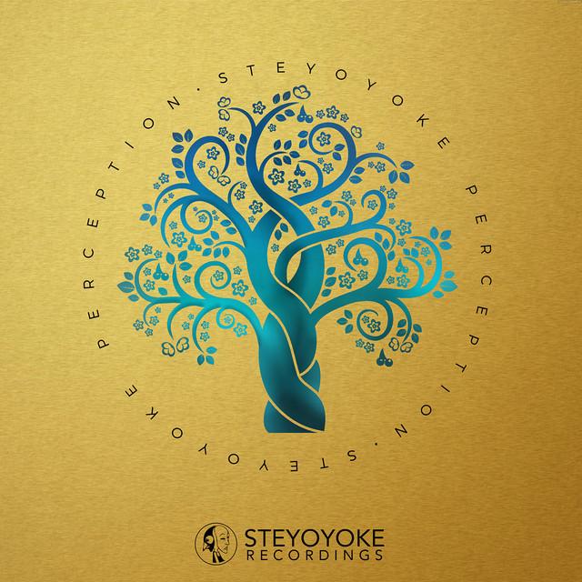 Steyoyoke Perception, Vol. 07