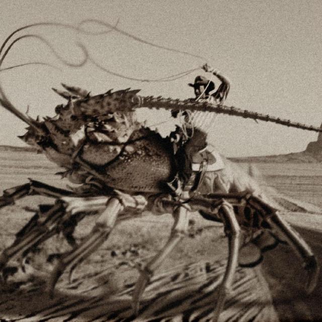 Free Lobster Buffet