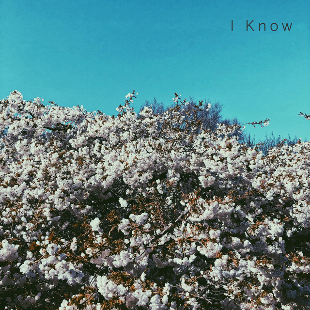 Artwork for I Know by Vktor