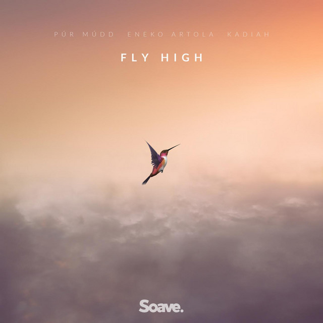 Fly High Image