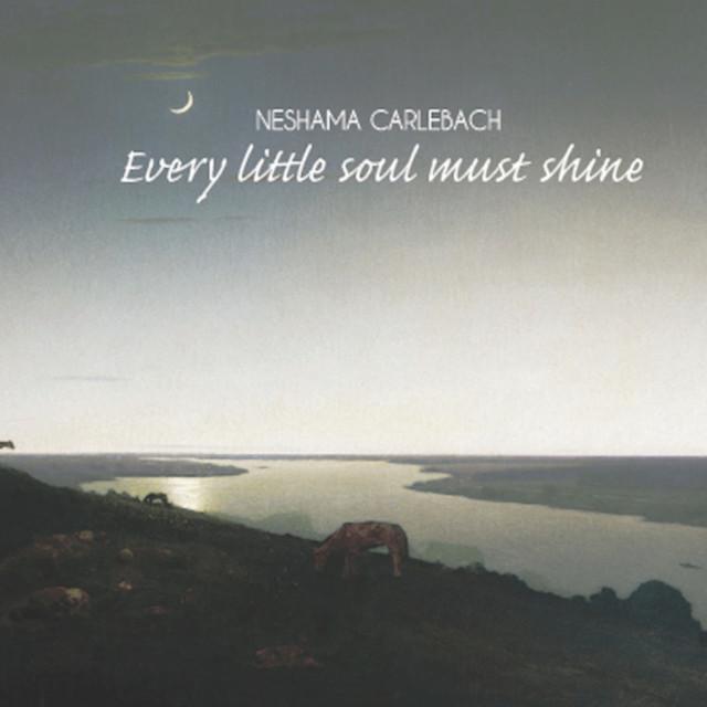 Every Little Soul Must Shine