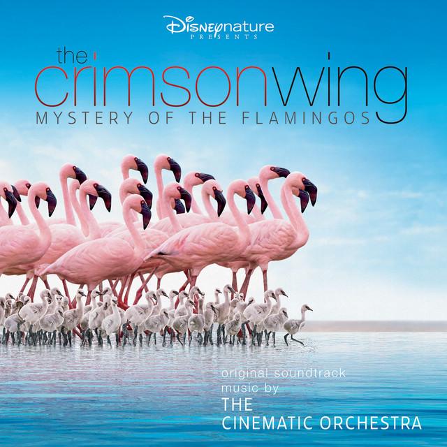 Arrival of the Birds album cover