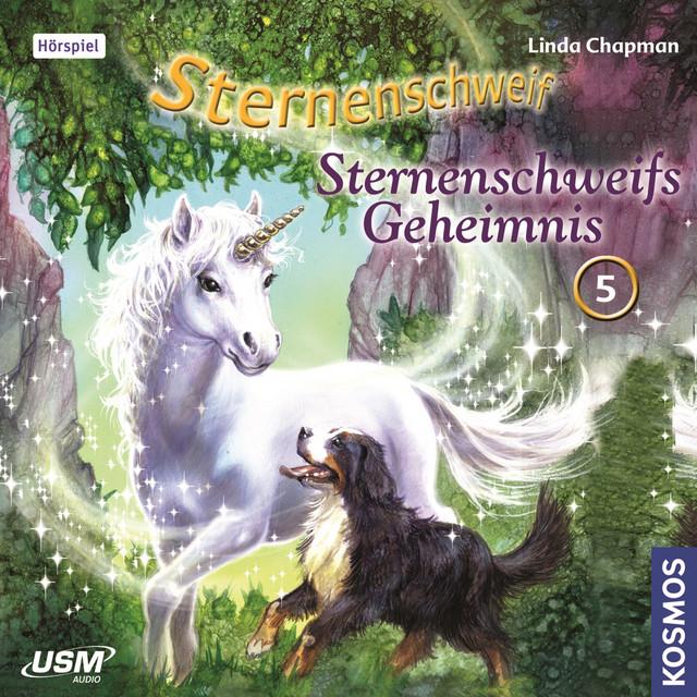 Teil 5: Sternenschweifs Geheimnis Cover