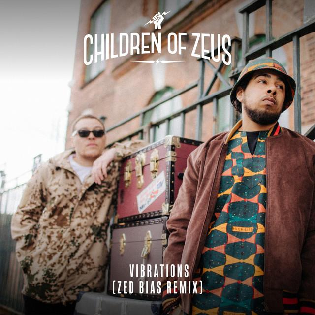 Vibrations (Zed Bias Remix)