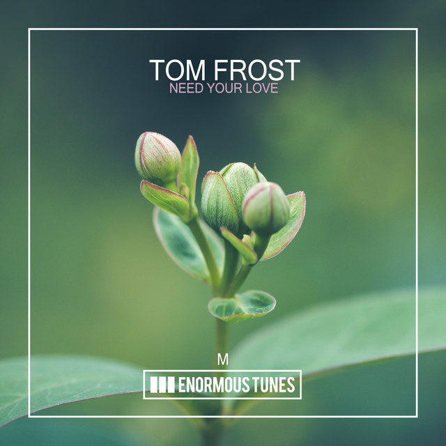 Tom Frost