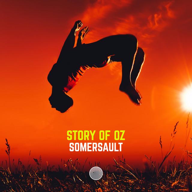 Somersault Image