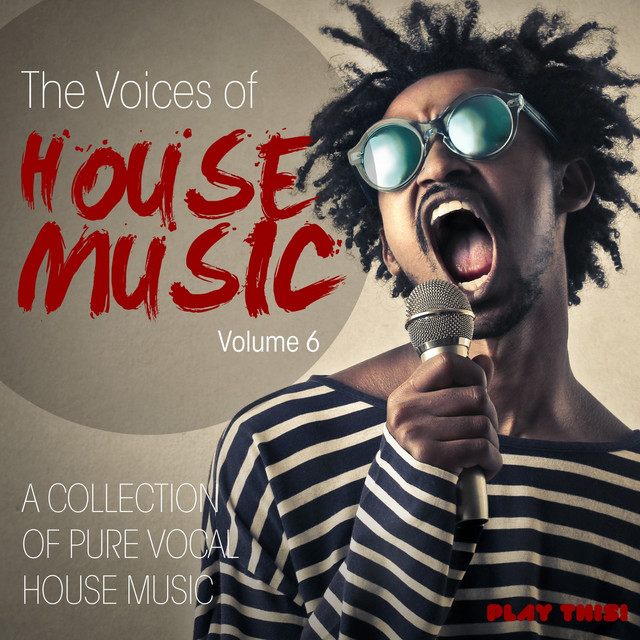 The Voices Of House Music, Vol. 6
