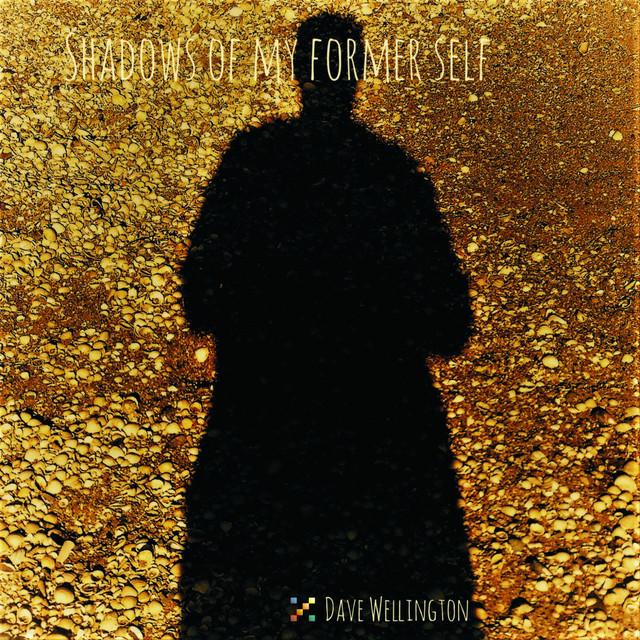 Dave Wellington - Shadows of My Former Self