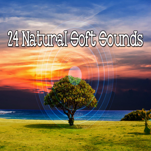 Album cover for 24 Natural Soft Sounds by Sounds of Nature Noise