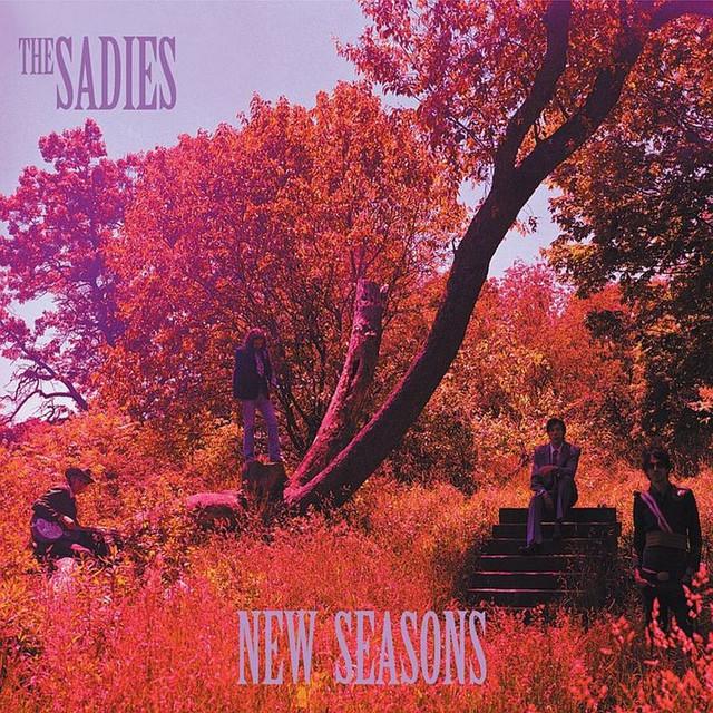 Never Again album cover