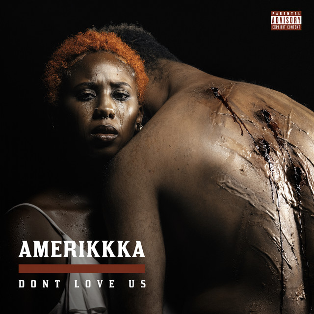 Album cover for Amerikkka Dont Love Us by Mistah F.A.B., The Mekanix