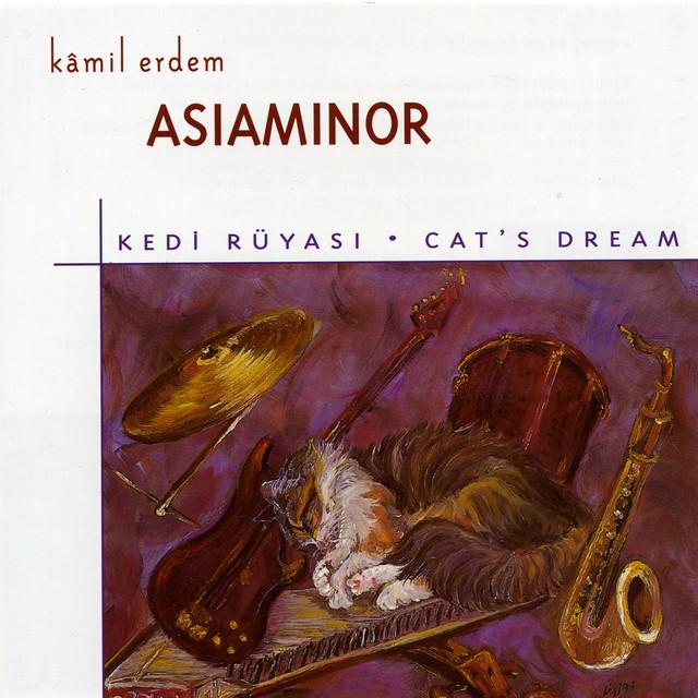 Kedi Rüyası