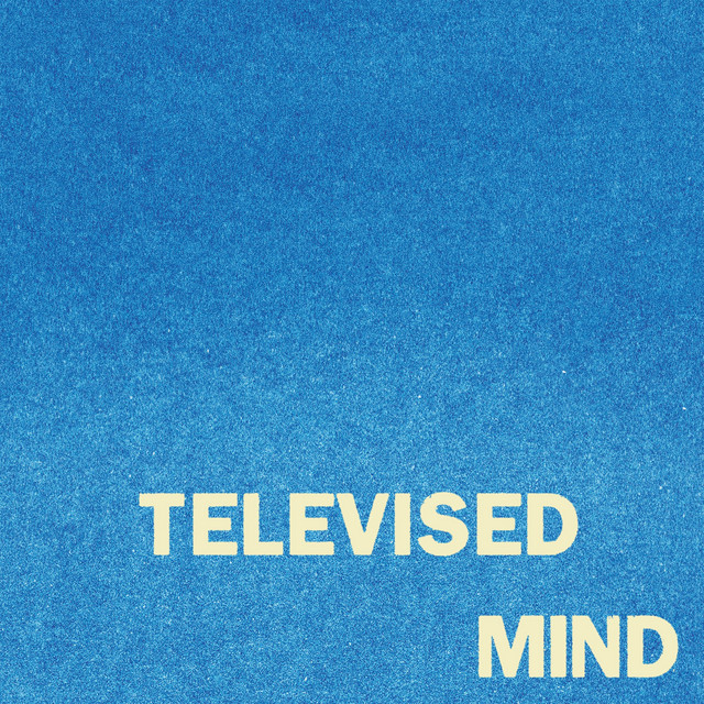 Televised Mind by Fontaines D.C.