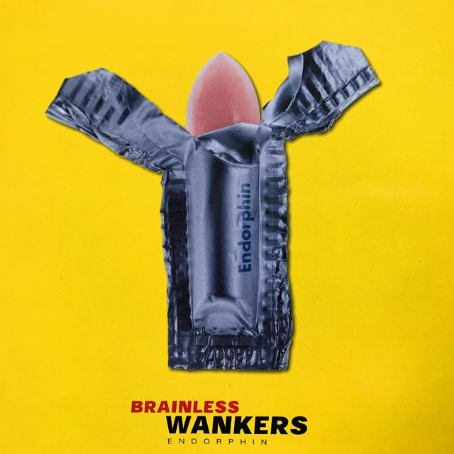 Brainless Wankers